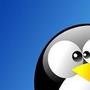 PinguinoPazzo