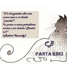cb-pantarhei