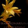 ImmaginariumArt