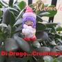Ali Di Drago Creations