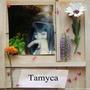 tamyca