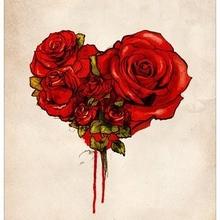 roseroses