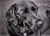 Ritratto su commissione cane o gatto a matita