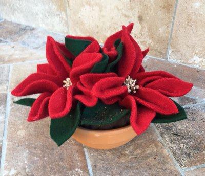 Ciotola di terracotta con stelle di natale di lana cotta rossa