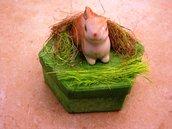 bomboniera con coniglio