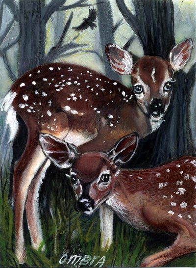 nella foresta
