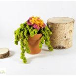 pianta grassa con fiore rosa e giallo ad uncinetto, piantina amigurumi, decorazione casa, vaso 9 cm.