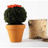 pianta grassa riccia con fiore rosso ad uncinetto, decorazione casa, bomboniera, vaso 9 cm.