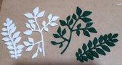 foglie 2 modelli