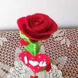 Rosa per San Valentino