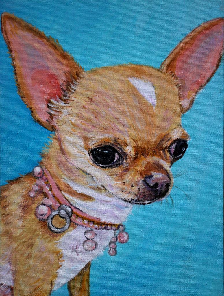 Rtratto cane chihuahua acrilico dipinto a mano