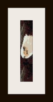 PDF schema bracciale Aquila2 in stitch peyote pattern - solo per uso personale