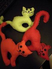 gattini morbidosi e colorati