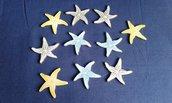 Miniature stelle marine