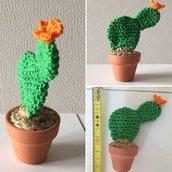 Amigurumi piccolo cactus ornamentale