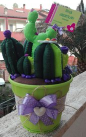 Set piante grasse in pannolenci