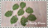 Set foglie tropicali Monstera