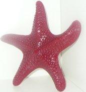 Candela stella marina