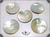 Grandi bottoni mm.50  in vera madreperla di alta qualità - 5 pezzi