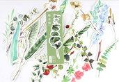Segnalibri in cartoncino 5 pezzi set fiori e piante sg2