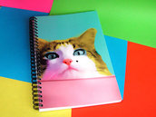 MARILYN'S CAT NOTEBOOK