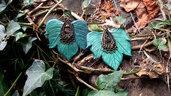 Orecchini foglie modellate a mano in pasta polimerica edera elfi natura fate