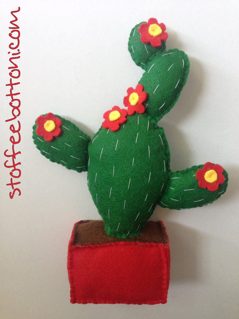 Cactus fiorito  in vaso in panno
