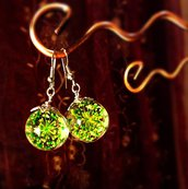 Orecchini a sfera con fiori secchi reali verdi Queen Ann's lace