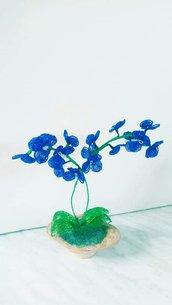 Orchidea blu fiori di perline