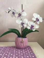Orchidea 5 fiori