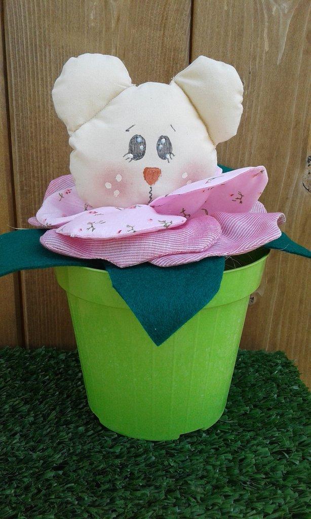 Fiori orsetto in vaso