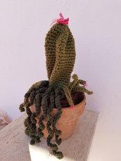 Amigurumi Cactus Pianta Grassa realizzata a mano con vaso in terracotta