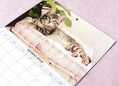 CALENDARIO 2018 da parete - foto di gattini - cancelleria - studio