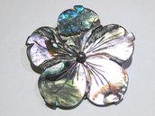 spilla ciondolo fiore conchiglia blu