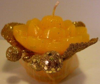 Gardenia dorata