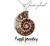 Ciondolo ammonite collana fossile archeologia conchiglie