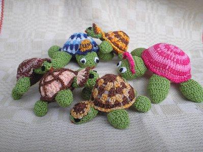 Tartaruga puntaspilli ad uncinetto