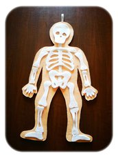 """""""Il Corpo Umano"""""""