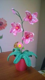 orchidea all'uncinetto in rosa sfumato