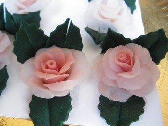 rose portafoto