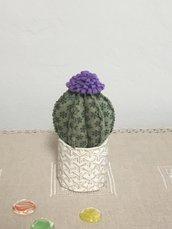 Vaso di ceramica intrecciato con cactus, palla di cactus, piante grasse