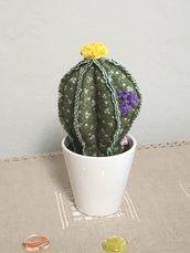 Vaso di ceramica con cactus, piante grassa tonda, palla di cactus