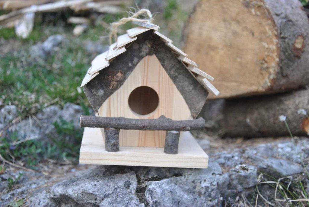 Casetta in legno per uccelli, nido