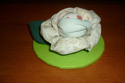 Rose di primavera