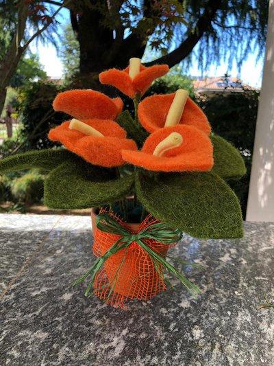 Vaso di terracotta con fiori arancioni