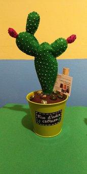Piantina in feltro cactus eternum
