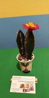 Piantina in gomma eva cactus eternum