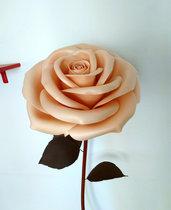 Rosa gigante colore crema