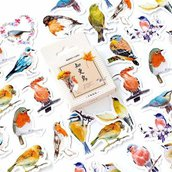 Stickers piccoli uccellini