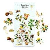 Stickers su imitazione carta pergamena funghi